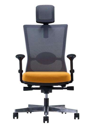 Ghế giám đốc Forte HP01